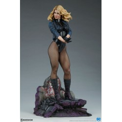 DC Comics: Black Canary -...