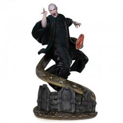 Harry Potter: Voldemort &...