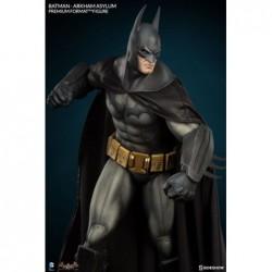 Batman Arkham Asylum:...